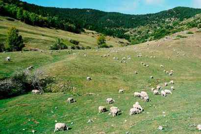 Rural holidays in Catalonia