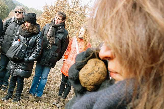 Barcelona black truffle tour day trips