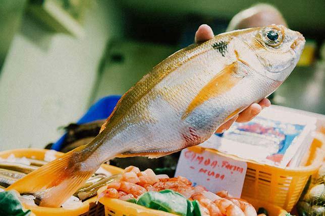 Barcelona fish market tour
