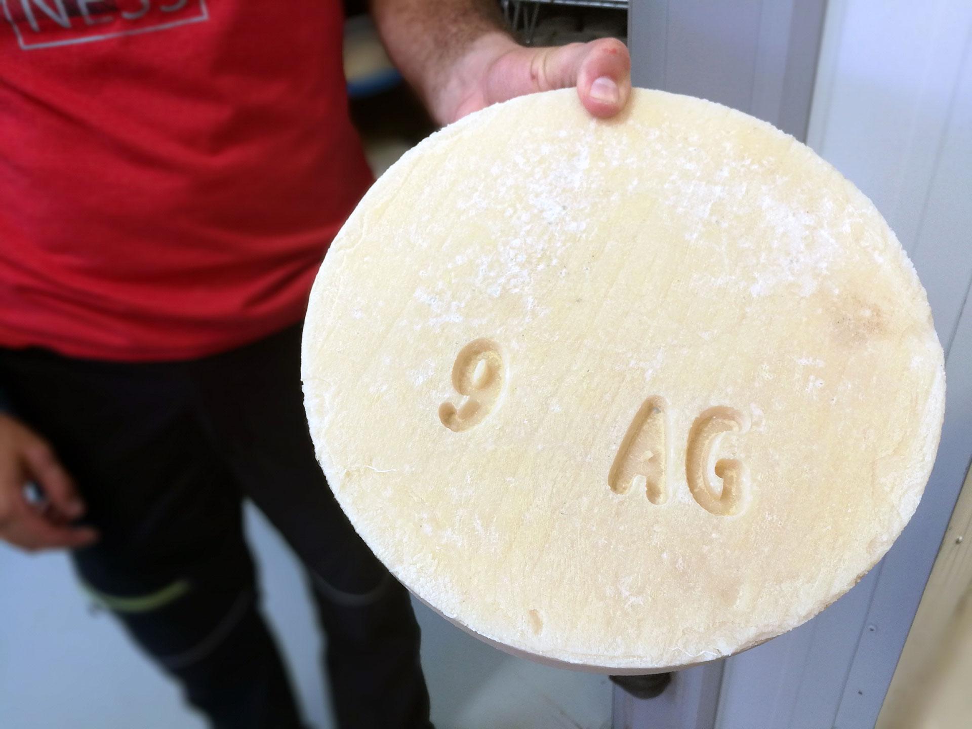 https://aborigensbarcelona.com/wp-content/uploads/2020/03/cheese.jpg